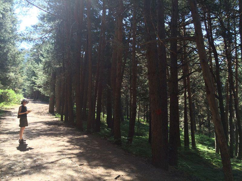 Camino Schmid de la Ruta de los Miradores de los Poetas