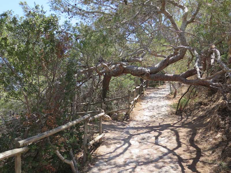 Camino de subida, senda fácil. Parque Natural del peñón de Ifach.
