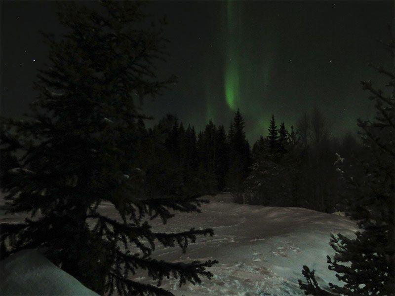 Auroras Boreales en Rovaniemi - La primera de la noche