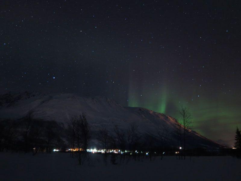 Auroras Boreales en Tromsø - Auroras Boreales en el horizonte