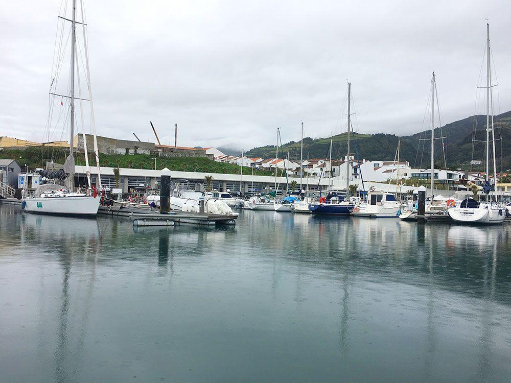 Avistamiento ballenas azores - Whale Watching Terra Azores - Puerto de Vila Franca do Campo
