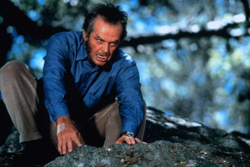 Avistamiento de lobos en Zamora - Película Wolf de Jack Nicholson