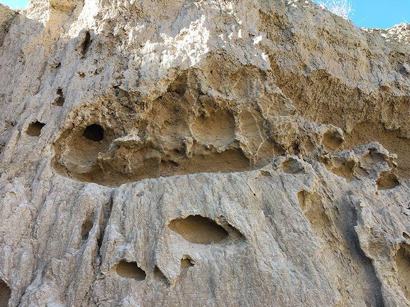 Bardenas Reales en segway - Navarra - Paredes con huecos por el piping