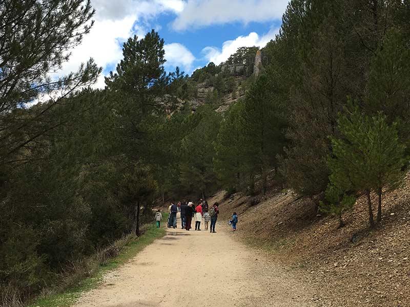 Cañón del Río Lobos - Grupos de familias paseando hacia la ermita