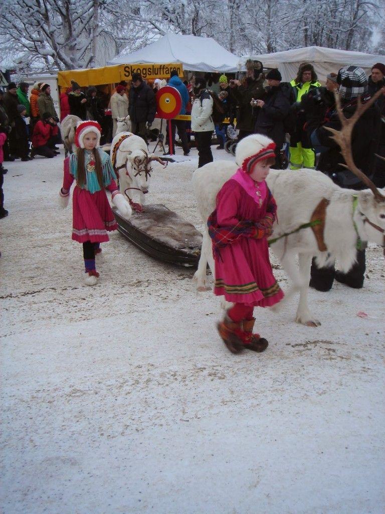 Caravana de renos del mercado de Jokkmokk (foto de Jose Ignacio)