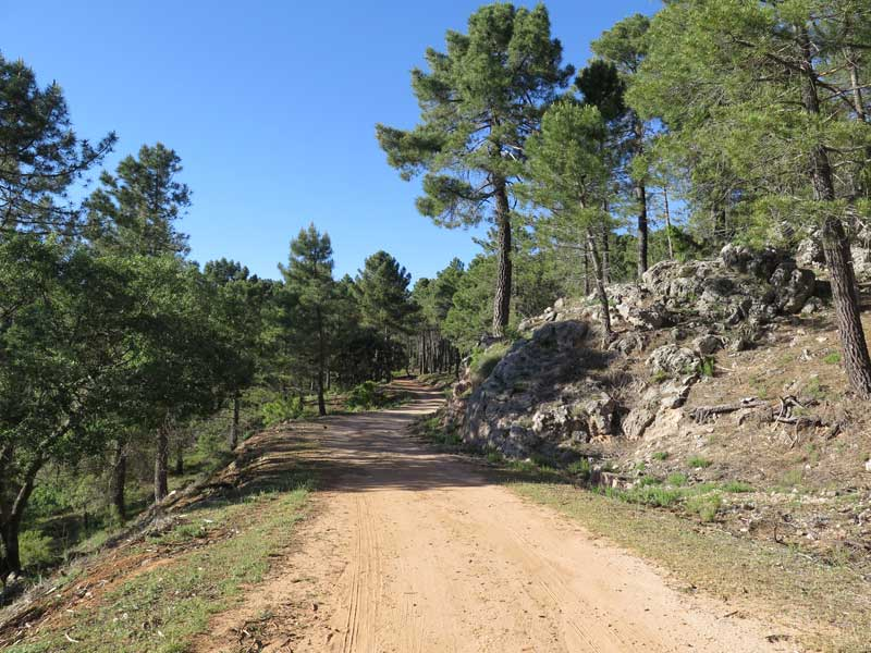 Carretera de montaña para subir a la Piedra del Cambrón