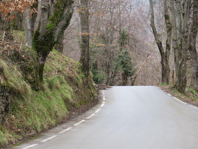 Carretera en las profundidades de los Picos de Europa