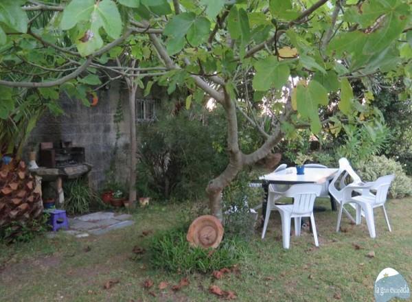 Barbacoa en la parte de atrás del jardín
