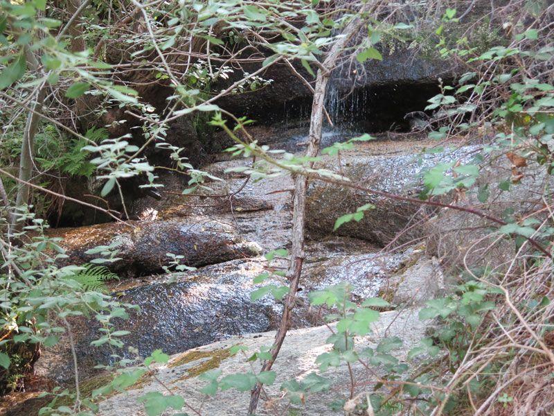 Cascada de agua