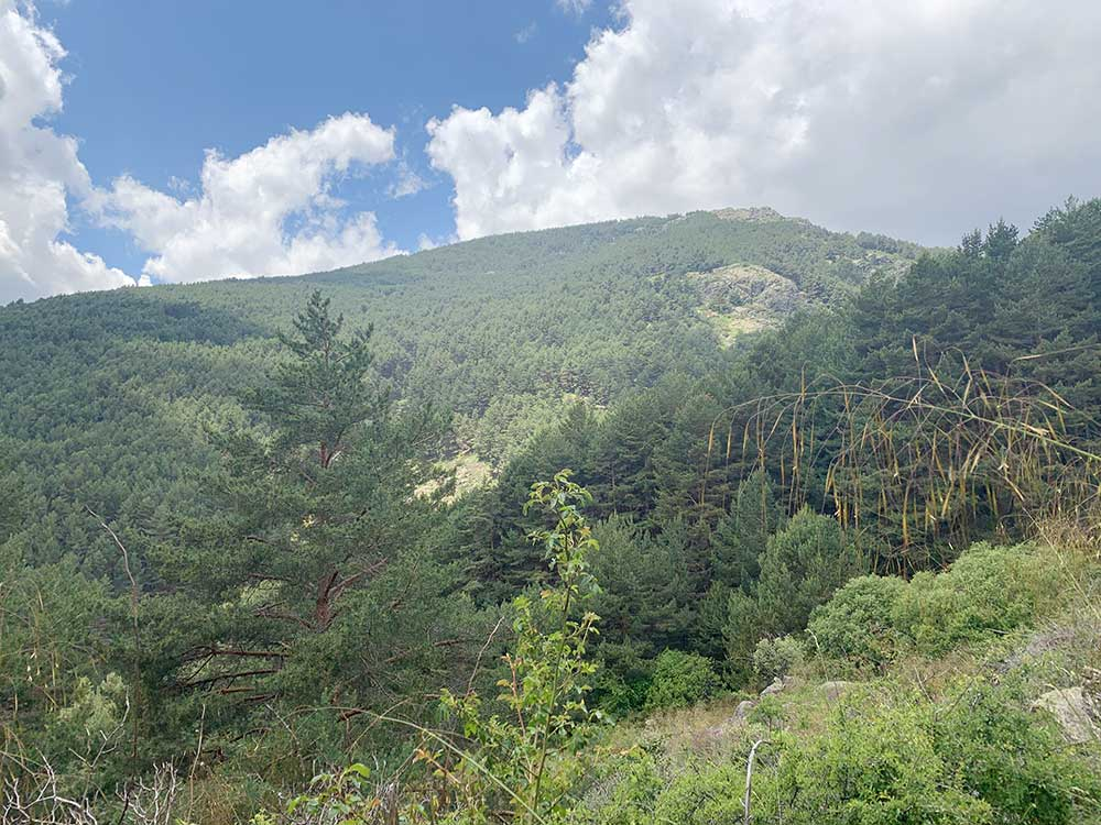 Montes Carpetanos