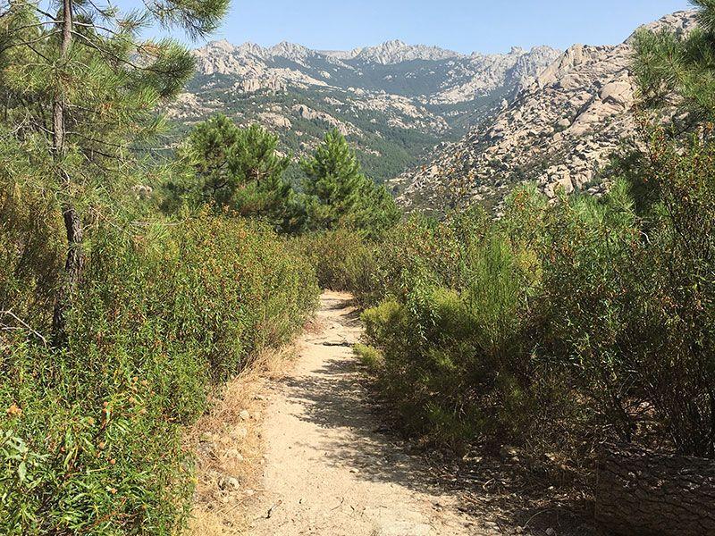 Cómo llegar a la Charca Verde - La Pedriza - Vistas