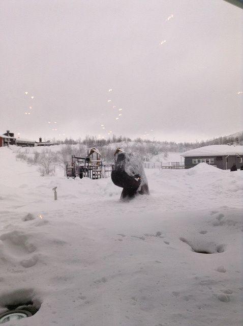 Amanecer nublado en Kiruna