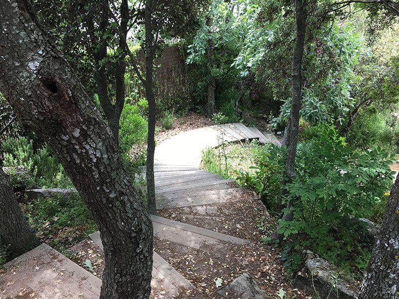 El Bosque Encantado - Madrid - Escaleras