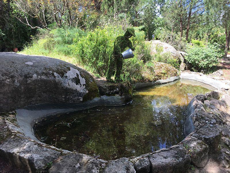 El Bosque Encantado - Madrid - Hombre echando agua