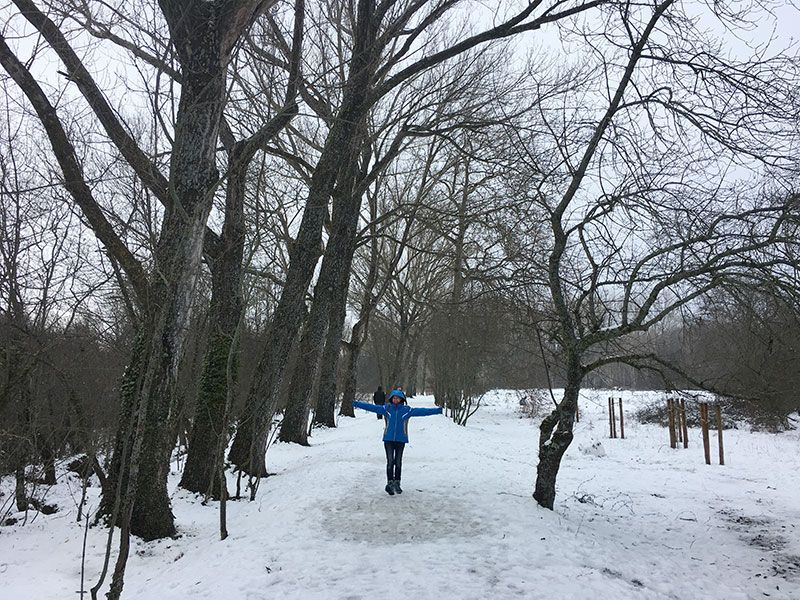 El Bosque Finlandés - Rascafría - Camino Natural Valle del Lozoya