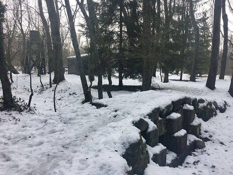 El Bosque Finlandés - Rascafría - Comienzo