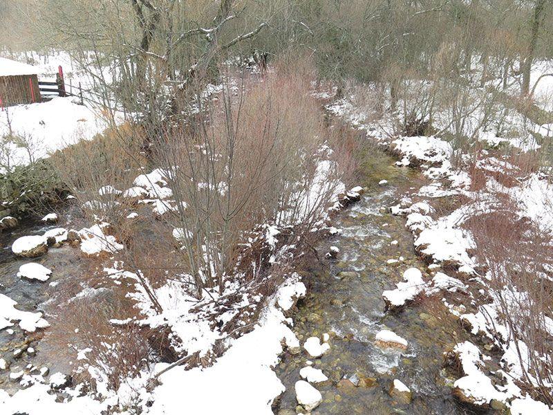El Bosque Finlandés - Rascafría - Río Lozoya