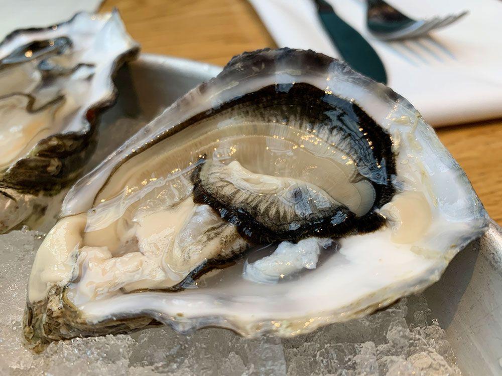 Restaurante 1st Lobster - Ostra