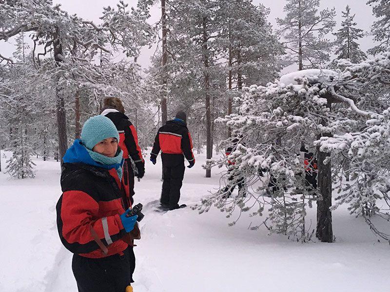 Excursión de raquetas de nieve en Rovaniemi - Mar