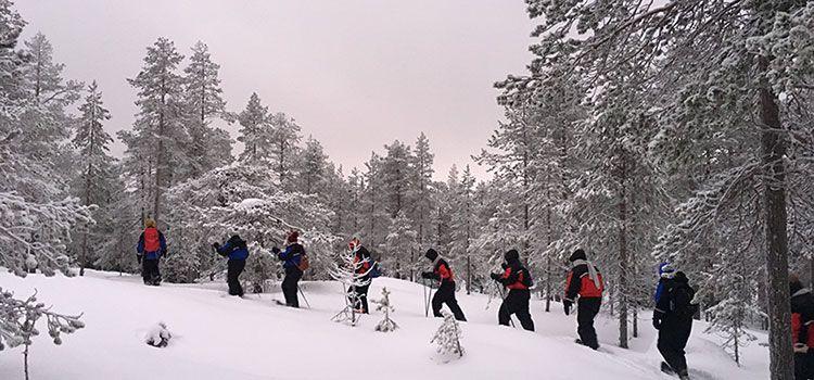 Excursión de raquetas de nieve en Rovaniemi -