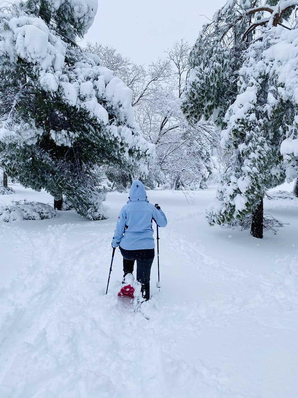 Paseo con raquetas de nieve en la Casa de Campo