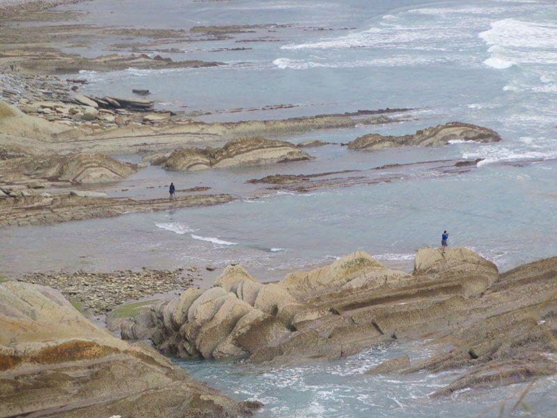 Flysch - Geoparque de la Costa Vasca - Rasa mareal