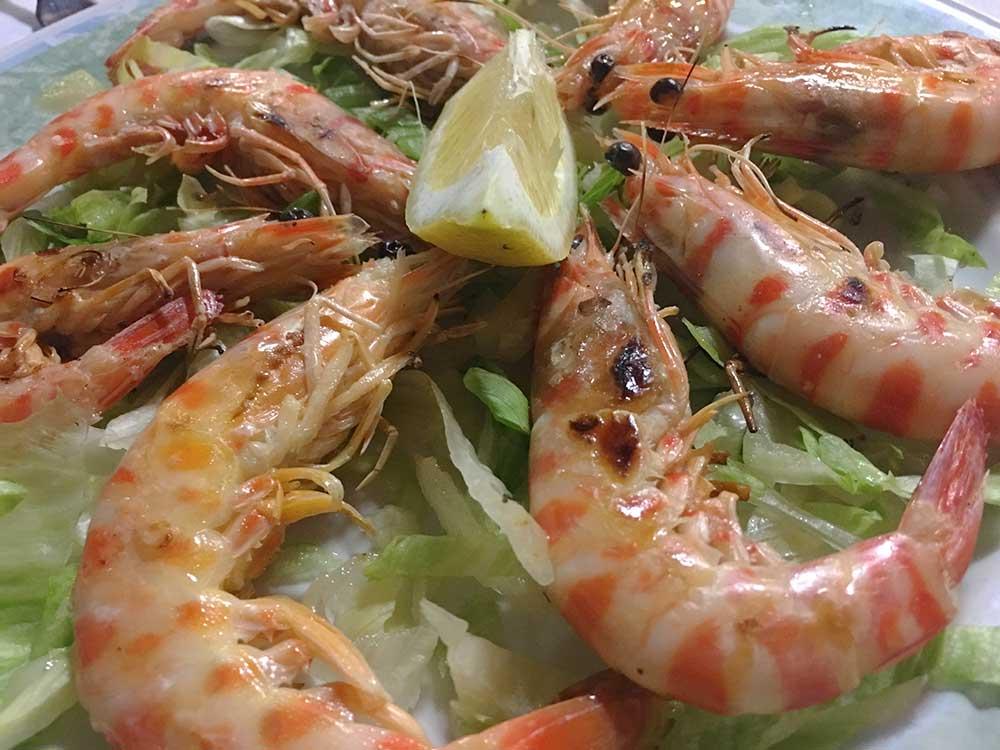 Gastronomía de Peñíscola - Langostinos