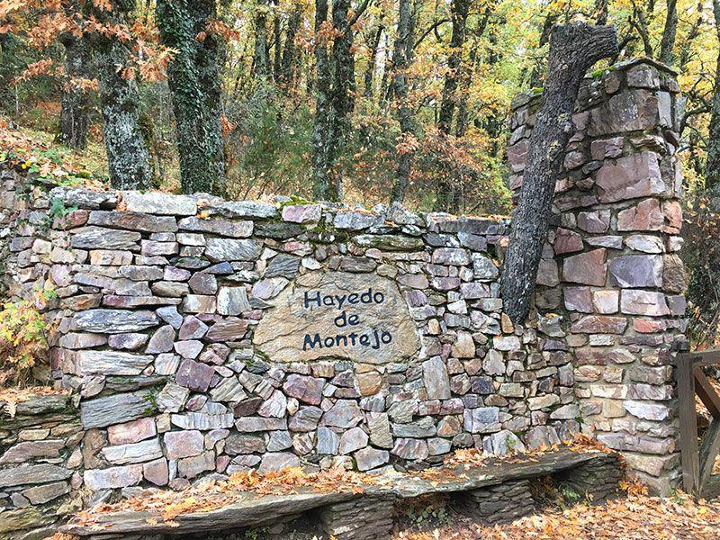 Hayedo de Montejo - Sierra del Rincón - Madrid - Entrada