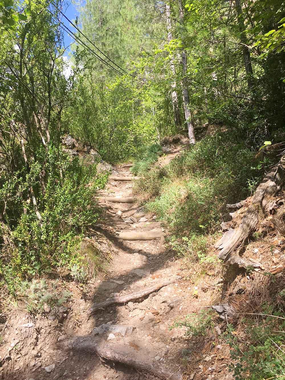 Hoz de Beteta y sumidero de Mata Asnos - Primer tramo Paseo Botánico
