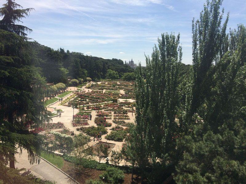 Jardines de la Rosaleda del Parque del Oeste