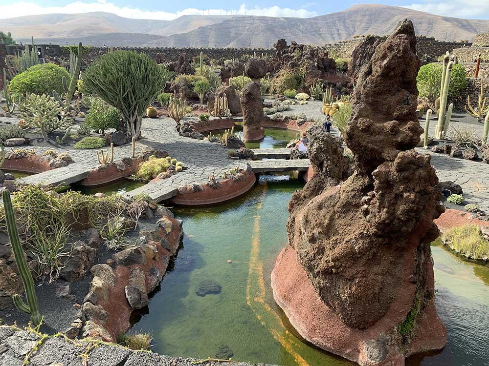 Panorámica del Jardín de cactus