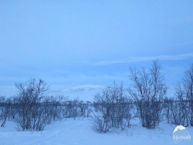 Espectaculares vistas durante el viaje Kiruna - Abisko