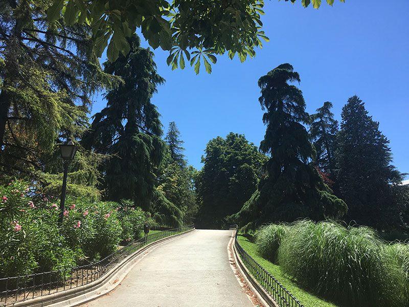 Parque de Berlín - Madrid - Senda
