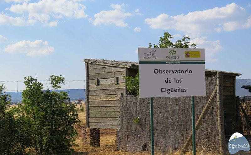 Observatorio de cigüeñas del Parque Nacional de Cabañeros