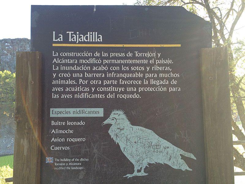 Parque Nacional de Monfragüe - La Tajadilla