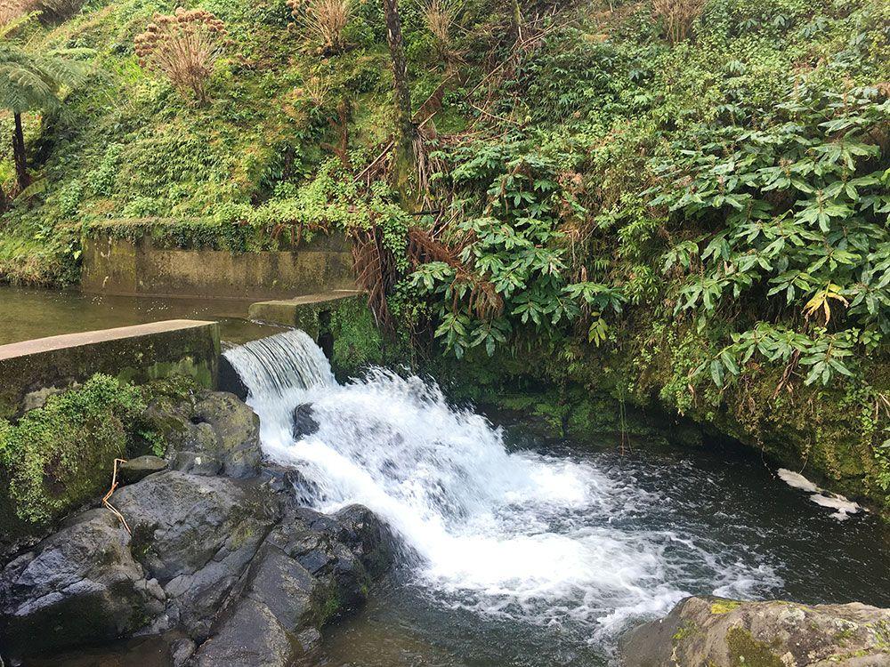 Parque Nacional Ribeira dos Caldeirões - São Miguel - Azores - Arroyo