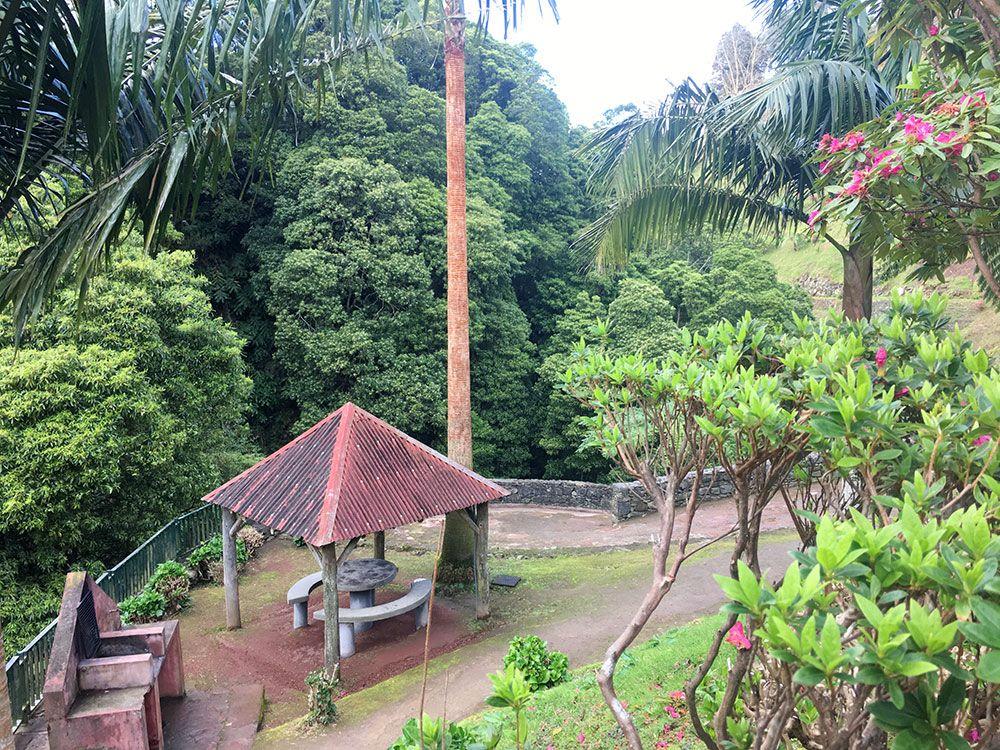 Parque Nacional Ribeira dos Caldeirões - São Miguel - Azores - Barbacoa