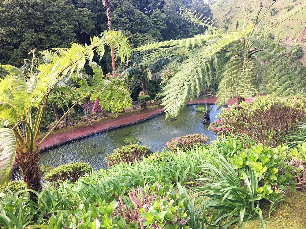 Parque Nacional Ribeira dos Caldeirões - São Miguel - Azores - Rincones