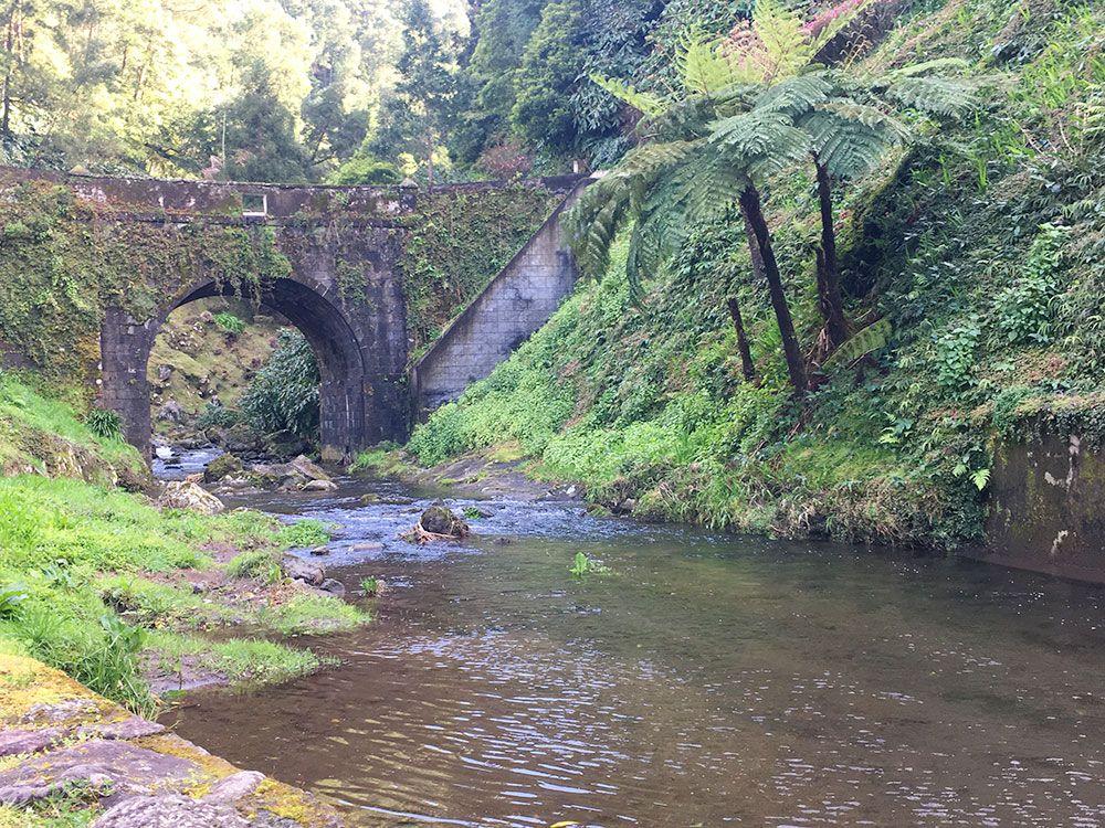 Parque Nacional Ribeira dos Caldeirões - São Miguel - Azores - Puente
