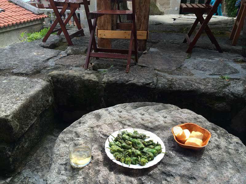 Qué y dónde comer en Galicia - Padrón - Pimientos