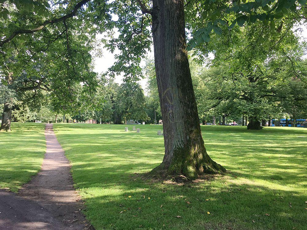 Qué ver en Gotemburgo - Parques