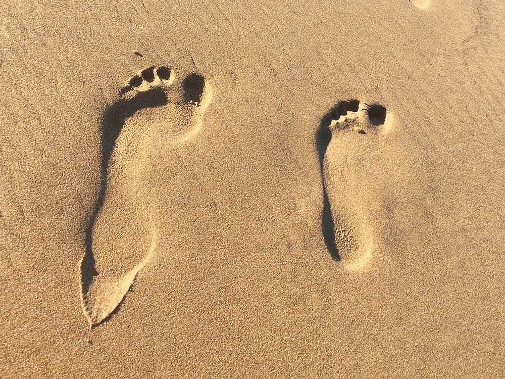 Playas de arena en Guardamar
