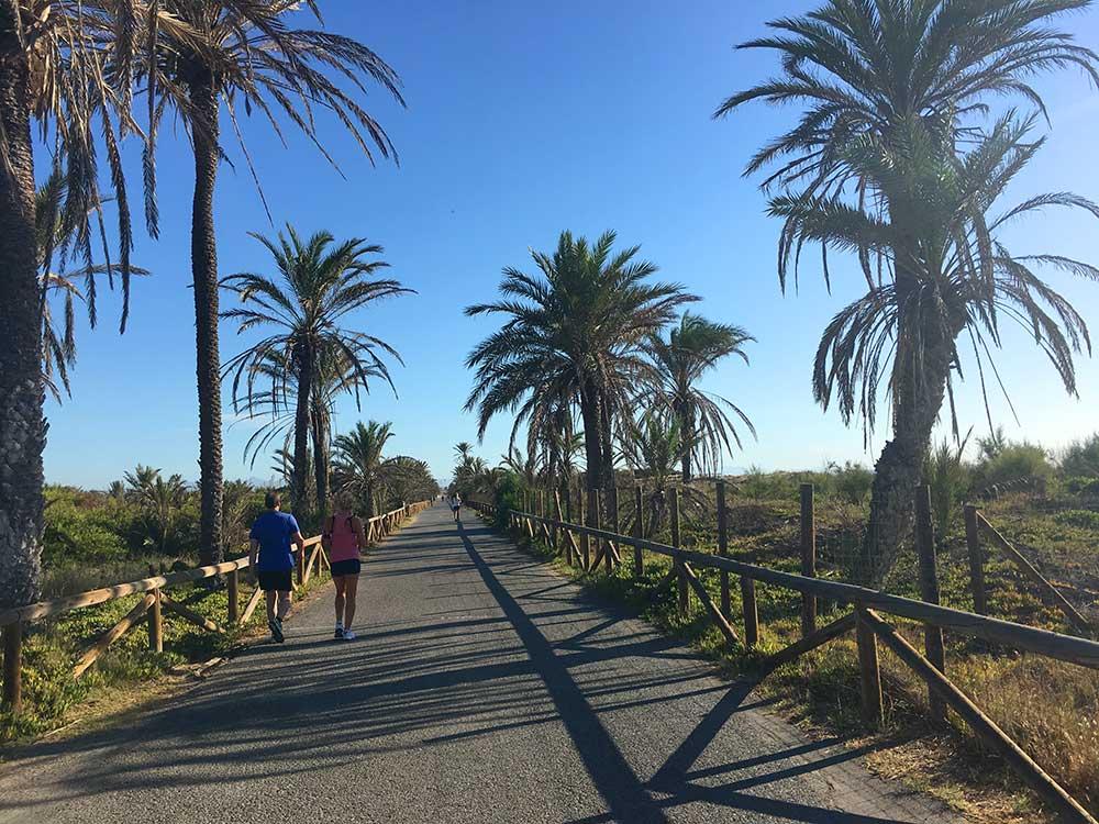 Qué ver en Guardamar - Los Pinares