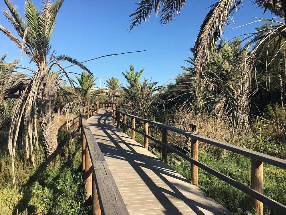 Qué ver en Guardamar - Parque Alfonso XIII
