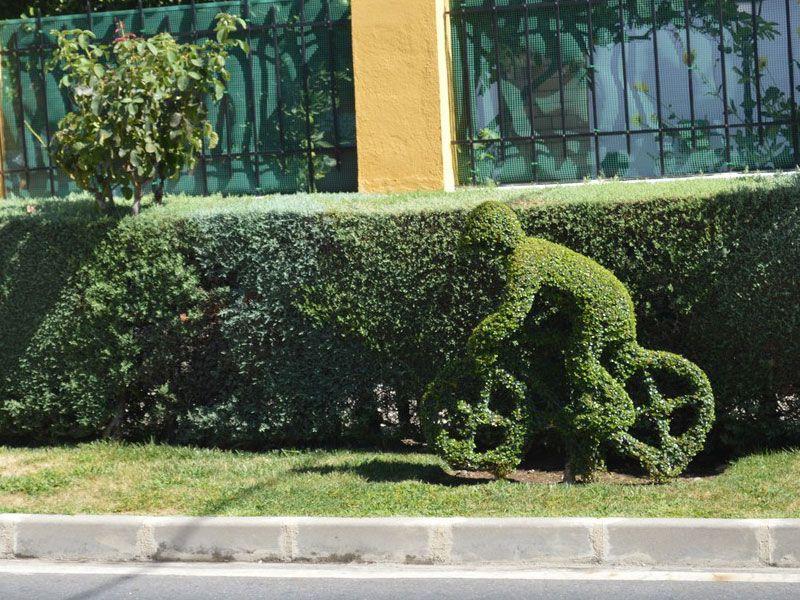 Qué ver en Losar de La Vera - Arte topiario - Ciclistas