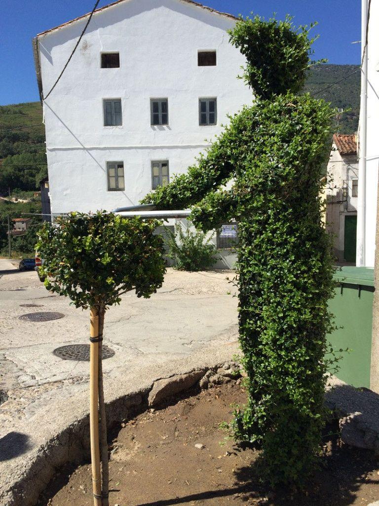 Qué ver en Losar de La Vera - Arte topiario - Vicente
