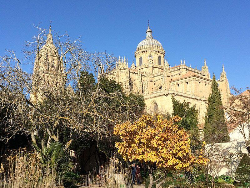 Qué ver en Salamanca en un día - Vistas de La Catedral