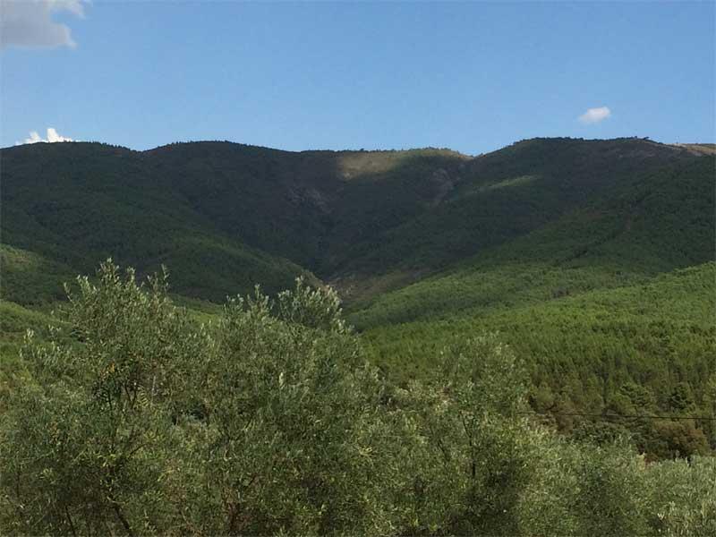 Qué ver en San Martín de Trevejo - Sierra de Gata