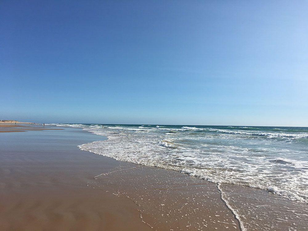 Qué ver y hacer en Vejer de la Frontera - Cádiz - Playa de El Palmar