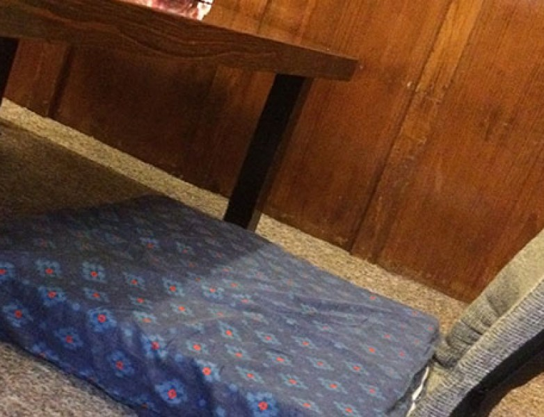 Mesa japonesa del restaurante Naomi